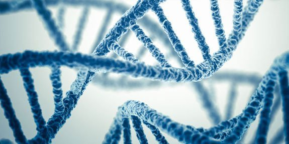 גנטיקה רפואית