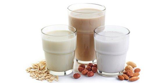 דיאטה עתירת חלבונים